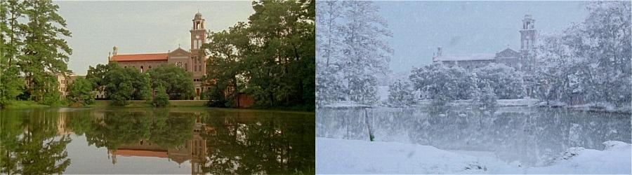 snow_wonder_01